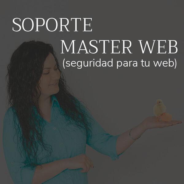 servicios-soporte-masterweb-olga
